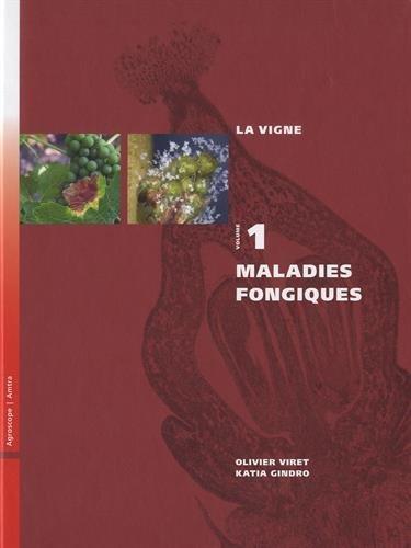 La vigne : Volume 1, Maladies fongiques par Olivier Viret, Katia Gindro, Collectif