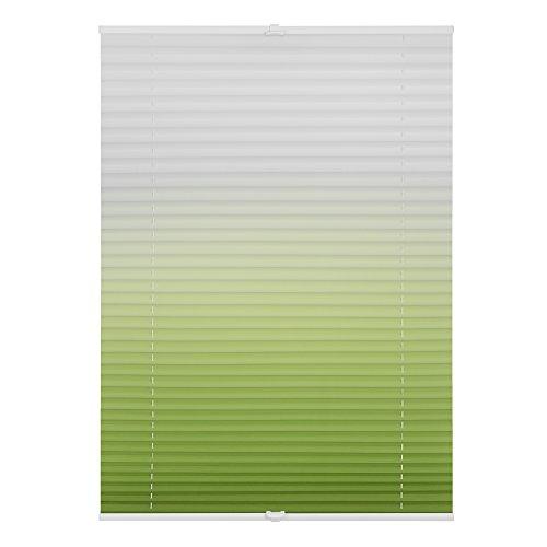 Lichtblick Plissee Klemmfix, 80 cm x 130 cm (B x L) in Grün mit Farbverlauf, ohne Bohren, Sicht- und Sonnenschutz, lichtdurchlässig & blickdicht