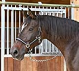 Kerbl Halfter Mustang