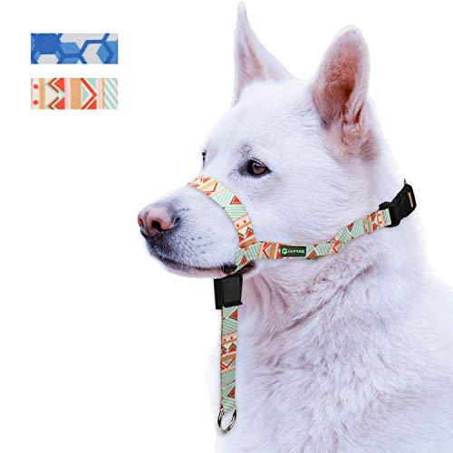 RockPet Correa de Adiestramiento el Collar para Perros de Bozal y Deja de Tirar, Ajustable, Herramienta de Entrenamiento(S,Verde)