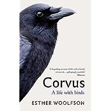 Corvus: A Life With Birds