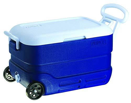 Princeware Plastic Ice Box, 40 Litre, Assorted