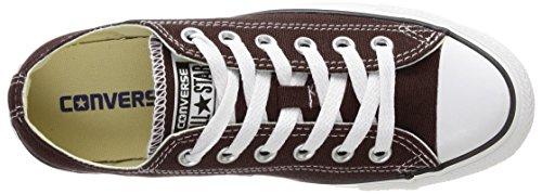 CONVERSE Chuck Taylor All Star Seasonal Ox, Unisex-Erwachsene Sneakers Braun (Marron)