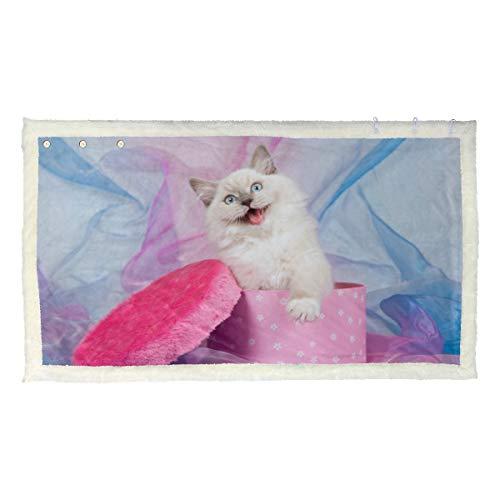 Simpatico gatto animale con scatola coperta indossabile teenager coperta indossabile adulto 53x30 pollici con 3 pulsanti per divano all'aperto caldi getti invernali avvolgere scialle donna