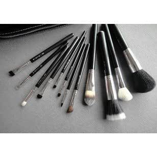 MAC Cosmetics Professional Brush Set 12 Piece with Case ...