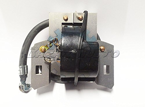 Spule Elektronische Zündung Briggs & Stratton 5HP Quantum-Europa -