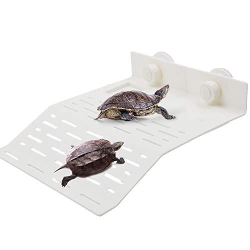 LFS Turtle Bank - Plataforma Flotante para canastas