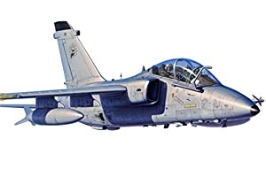 Hobbyboss 81743 Kit de plástico Modelo a-11b Trainer Aircraft, Escala 1: 48