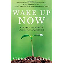 Wake Up Now: A Guide to the Journey of Spiritual Awakening by Stephan Bodian (2008-01-01)
