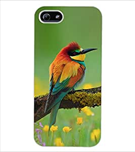 ColourCraft Amazing Bird Design Back Case Cover for APPLE IPHONE 5