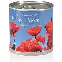 Extra Gifts flores de la lata - amapola