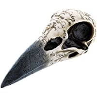 Figura Nemesis Now Edgars Raven Skull (Blanco/Negro)