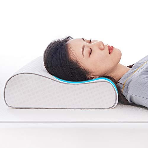 Top 10 Neck Pillows </div>                                   </div> </div>       </div>         <div style=