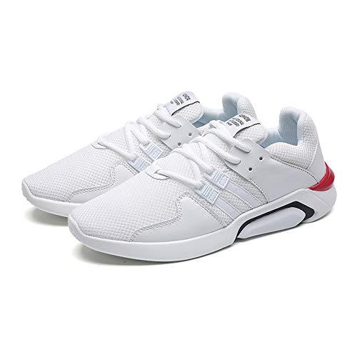 Day.LIN Herren Atmungsaktiv Arbeitsschuhe Sicherheitsschuhe Arbeitsschuhe Leicht Atmungsaktiv Sneaker