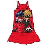 Vestido Ladybug y Cat Noir (8)