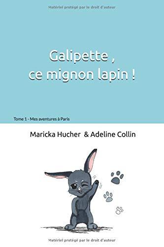 Galipette ce mignon lapin: Mes aventures à Paris par Maricka Hucher