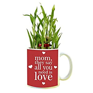 YaYa cafe Birthday Gifts for Mom All You Need is Love Mom Feng Shui Lucky Bamboo Indoor Mug Planter with 1 Tier