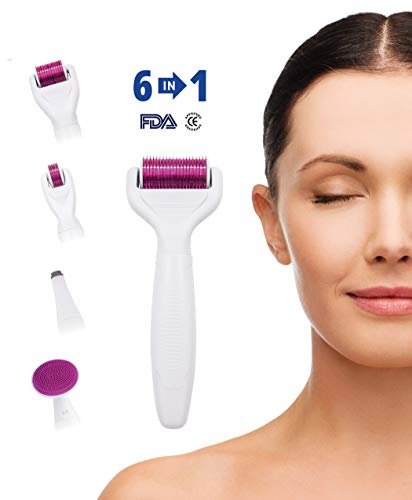 Hivexagon 6-in-1 Derma Roller Set - 4 separate Roller Köpfe für Verschiedene Körperteile und Gesichtsbereiche aus Medizinischem Stahl für Augen HG242