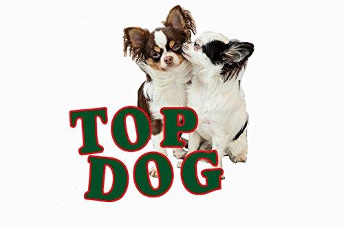 Top Dog deutsche Rinderkopfhaut – Kopfhaut – Rind – lose 1 kg (ca. 6 – 8 cm Stücke) 1000g - 2