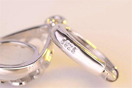Summens Hängend Creolen Damen Mädchen Ohrstecker Elegant Ohrringe Ohrhänger 925er Sterling Silber Hypoallergen