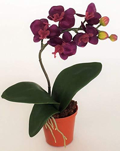 Kunstblumen Mini Orchidee Pure im Kunststofftopf. Ca 20 cm. In VIOLETT-VIO