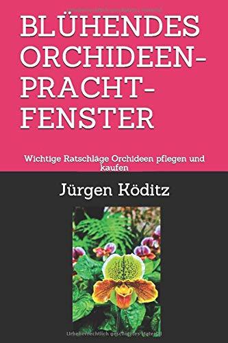 BLÜHENDES ORCHIDEEN-PRACHT-FENSTER: Wichtige Ratschläge Orchideen pflegen und kaufen