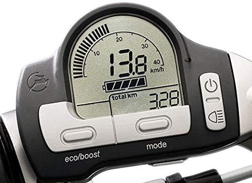 Gazelle Display für Innergy E-Bike grau