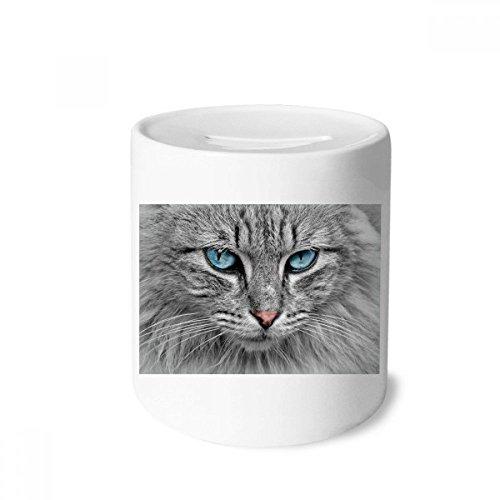 DIYthinker Graue Katze Tier Wilde Sterne Blaue Augen-Geld-Kasten Sparkassen Keramik Münzfach 3.5 Zoll in Height, 3.1 Zoll in Duruchmesser Mehrfarbig