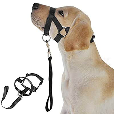 Alamana timeracing No Pull Nylon Anti Bite Dog Head Collar with a Short Leash from Alamana