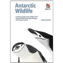 Antarctic Wildlife - A Visitor`s Guide (Wildguides)