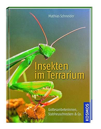 Kosmos: Insekten im Terrarium