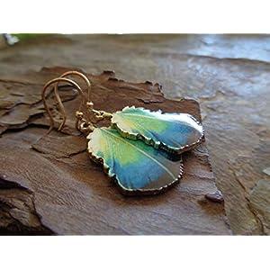✿ EMAILLE GOLD BLATT – BLATTOHRRINGE ✿ Pfauenfeder grün – blaue – goldene Ohrringe