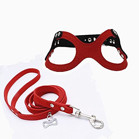 Dogs Kingdom Adjustable Buckle Closure Belt Dog Harness and Leash Dog Eyeglass Chest Strap and Bone Tag Leash Set Red