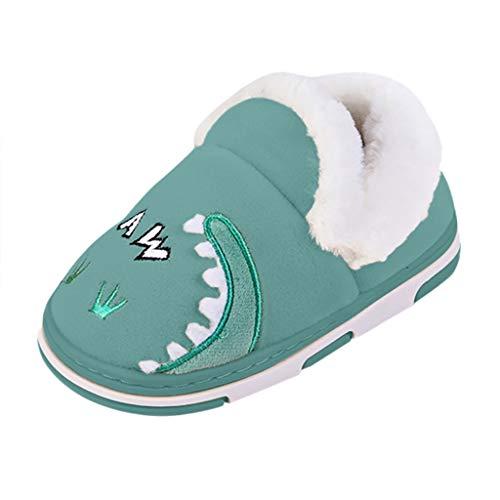 Unisex Boys Girls Winter New Warm Cute Animal Dinosaur Casual Shoes Children Little Kids Short Plush Flat Lightweight Soft Sole Home Slippers