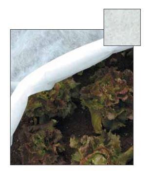 papillon telo antigelo tnt in polipropilene permeabile 2 x10 m