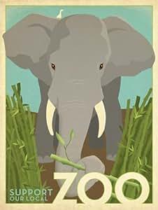 Zoo Elephant (121.92cm x 91.44cm Stampa artistica)