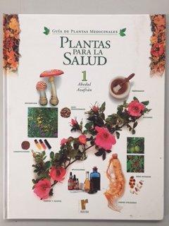 Plantas para la salud: 6