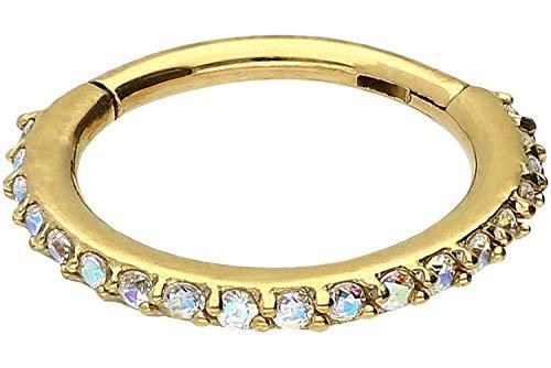 enstahl Segmentring Clicker | Kristalle | Piercing ✔ Septum ✔ Tragus ✔ Helix ✔ | Farb & Größenauswahl ()