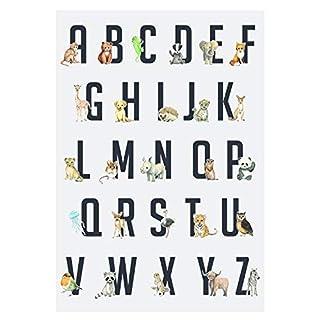 Frechdax® 3er Set Kinderzimmer Poster Baby Bilder DIN A4 | Waldtiere Safari Afrika Tiere Tierposter Luftballon Ballon Farbwahl (ABC Lernposter A3 Tiere Alphabet)