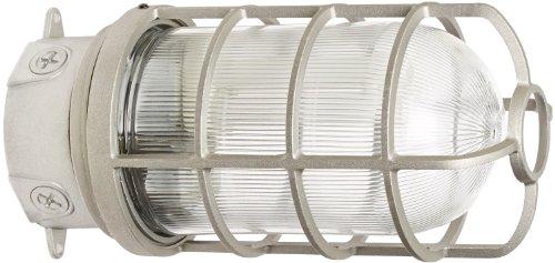 Rab Beleuchtung vx200dg/F22vaporproof VX 10,2cm Deckenleuchte Box Passepartout CFL Lampe mit Glas Globus und Guard, Quad Typ, Aluminium, 22W Leistung, 1200Lumen, 120V, 1/5,1cm Hub, natur