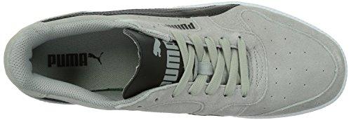 Puma Unisex-Erwachsene Icra Trainer Sd Low-Top Grau (limestone grey-black)