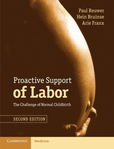 proactive-support-of-labor-the-challenge-of-normal-childbirth-by-paul-reuwer-2015-08-25