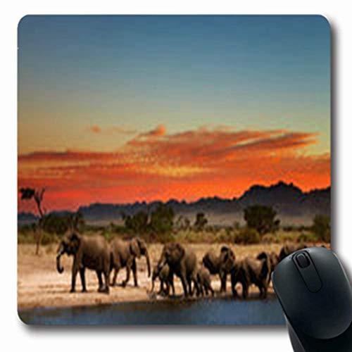 Luancrop Tapetes para el Sol Manada Elefantes Sabana Africana Vista Fauna Silvestre...