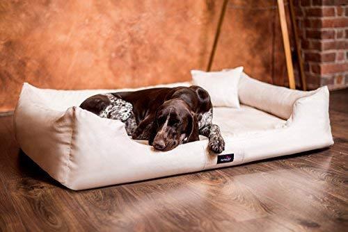 tierlando® Orthopädisches Hundebett Pluto Soft | Visco | Samtweiches Velours: A Größe: PLV5 130x100 cm | B Farbe: 05 Beige