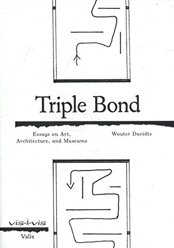 Triple Bound: Essays on Art, Architecture and the Museum: essays on Art, architecture and the museums (Vis-a-Vis)