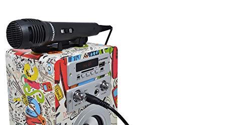 Dynasonic 025 Altavoz con Bluetooth para Karaoke (Modelo 2)
