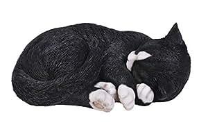 Vivid Arts Size B Real Life Sleeping Cat - Black/ White