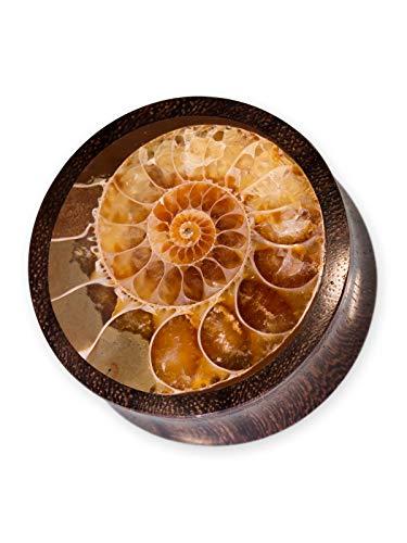 Fly Style Holz Plug Ohr Tunnel mit Ammonit (8-50mm), Grösse:30 mm (Indische Ring Nickel)