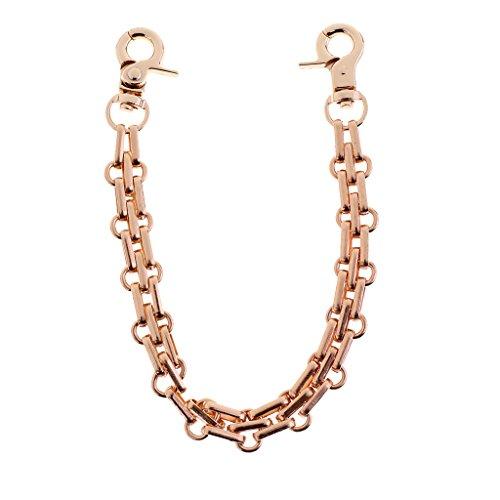 Sharplace 25cm Ersatz Schulter Riemen Kettenbügel Geldbeutelhandgriff Metall Gurt - Hell Gold, wie beschrieben -