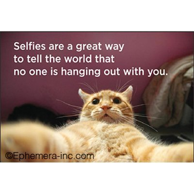 Selfies are a great way to tell the world that no one is hanging out with you. - RECTANGLE MAGNET by